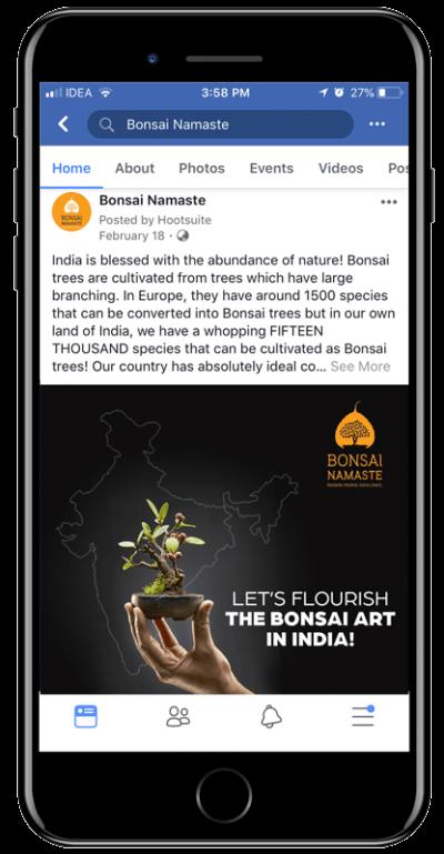 Bonsai Namaste